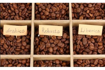 Разновидности кофе и в каких странах их выращивают