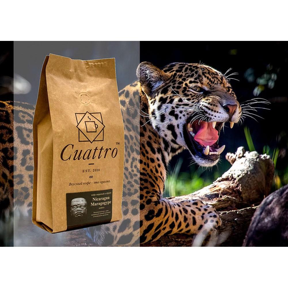 Кофе в зернах CUATTRO Nicaragua Marogogype (Никарагуа Марогоджип)